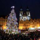 Vánoční trhy, Praha (Bakchus)